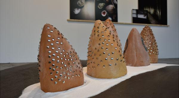 Exposition « Transmatérialité » Denise Bresciani à la Galerie Sainte-Catherine
